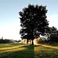 Dan Rascal - An Ottawa Video Production Company  The Royal Ottawa Golf Club - Legacy